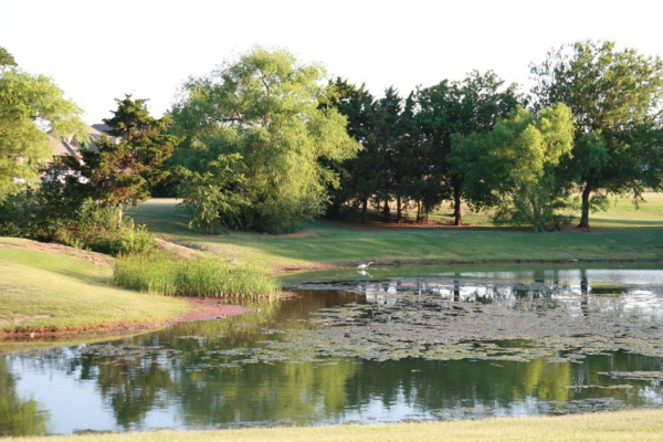 A neighborhood pond is perfect for fishing or a summer picnic.