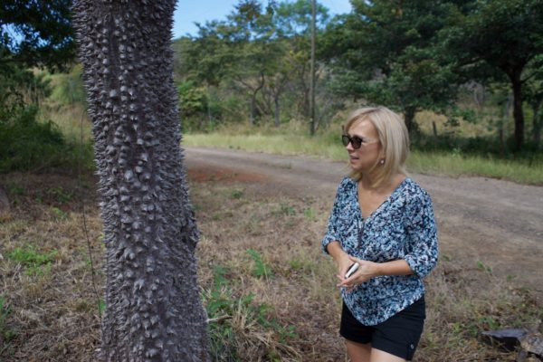 We ran across a lot of these thorny trees on the back roads of Costa Rica.